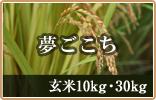 夢ごこち 玄米5・10・30kg