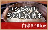 コシヒカリ・その他銘柄米 白米5・10kg